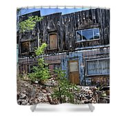 Ruins Of Memories Shower Curtain
