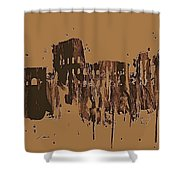 Ruins Of Rome Shower Curtain