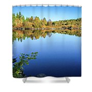 Ruminating The Fall Shower Curtain
