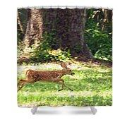 Run Bambi Run Shower Curtain