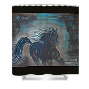 Run Horse Run Shower Curtain