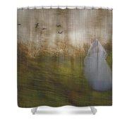 Runaway Bride Shower Curtain
