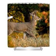 Running Buck Shower Curtain by Larry Ricker