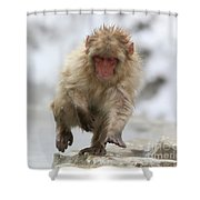 Running Fast Shower Curtain