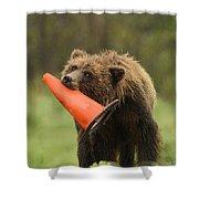 Runway Bear 2012 Shower Curtain