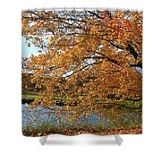 Rural Autumn Country Beauty Shower Curtain