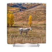 Rural Colorado  Shower Curtain