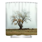 Rural Pasture And Tree Shower Curtain