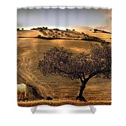 Rural Spain View Shower Curtain