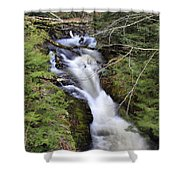 Rushing Montgomery Brook Shower Curtain