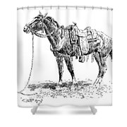 Russell: Rawlins Horse Shower Curtain