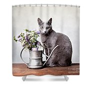 Russian Blue 02 Shower Curtain by Nailia Schwarz
