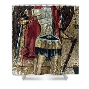 Russian Icons: Michael Shower Curtain