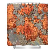 Rust Art Shower Curtain