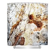 Rust Colored Limestone Rock Shower Curtain