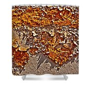 Rust On A Pipe Shower Curtain