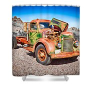 Rusted Classics - The International Shower Curtain