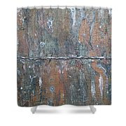 Rustic Barn Wood And Wire Shower Curtain