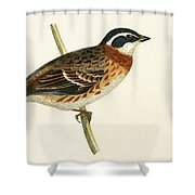 Rustic Bunting Shower Curtain
