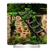 Rustic Ladder Shower Curtain