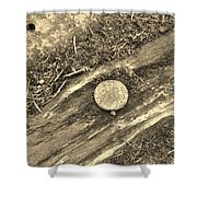 Rustic Nail Shower Curtain