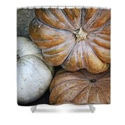 Rustic Pumpkins Shower Curtain
