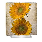 Rustic Sunflowers Shower Curtain