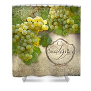 Rustic Vineyard - Chardonnay White Wine Grapes Vintage Style Shower Curtain