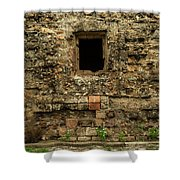Rustic Wall Shower Curtain