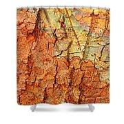 Rusty Bark Abstract Shower Curtain