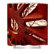 Rusty Gear Shower Curtain