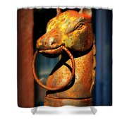 Rusty Horse Shower Curtain