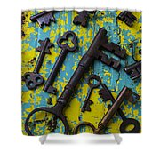 Rusty Keys Shower Curtain
