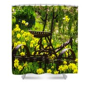 Rusty Plow In Daffodils  Shower Curtain
