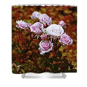 Rusty Romance In Pink Shower Curtain by Ivana Westin