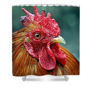 Rusty Rooster Shower Curtain