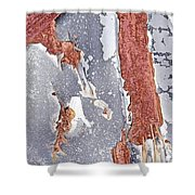Rusty Silver And Brown Shower Curtain