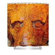 Rusty The Lion Shower Curtain