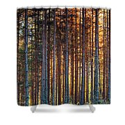 Rusy Forest Shower Curtain