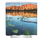 Ruth Lake Lilies Shower Curtain