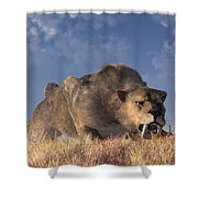 Saber-toothed Hunter Shower Curtain