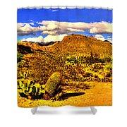 Sabino Canyon Panorama No. 1 Shower Curtain