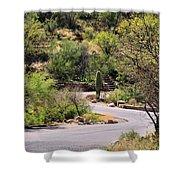 Sabino Canyon Road Shower Curtain
