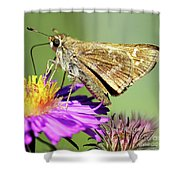 Sachem Skipper Shower Curtain