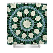 Sacramento Green And Cerulean Blue Mandala Shower Curtain