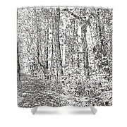 Sacred Grove Shower Curtain