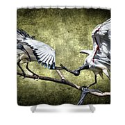 Sacred Ibis Photobombing Shower Curtain