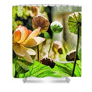 Sacred Lotus Painted Series Shower Curtain