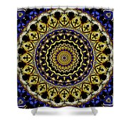 Sacred Mandala Shower Curtain