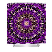 Sacred Paradise No. 1 Shower Curtain